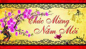 ChucMungNamMoi2009copy4.jpg